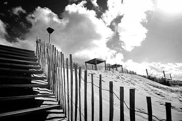 Duinen, Nederlandse kust (zwart-wit)