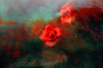Rosa van Jacky Gerritsen