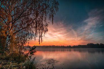 De boom naar de zonsopgang van Marc-Sven Kirsch