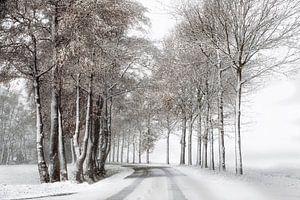 Winterlandschap met sneeuw van