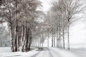Winterlandschap met sneeuw van De Afrika Specialist