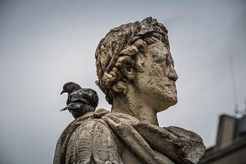 Standbeeld met duif von Frans Janssen