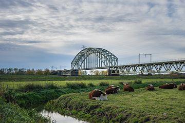 Spoorbrug over de Rijn bij Oosterbeek, Arnhem