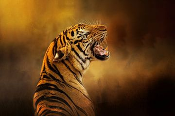 Brüllender sibirischer Tiger Porträt von Diana van Tankeren