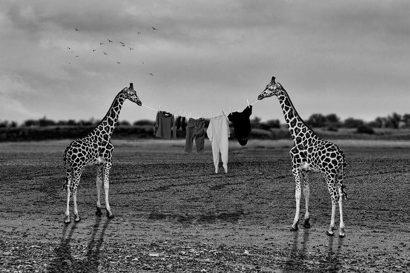 Drogen van wasgoed in Afrika - zwart-wit van Ursula Di Chito