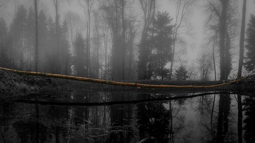 The Tree van Stefan Heesch