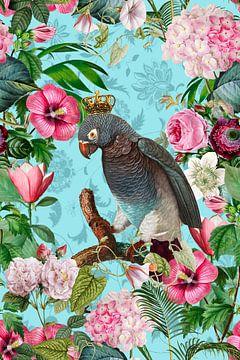 Papageienkönig im Blumenparadies von Andrea Haase