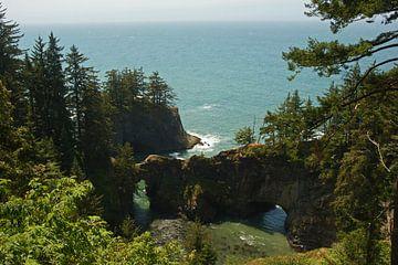 Ruige kustlijn, Oregon, USA van Jeroen van Deel