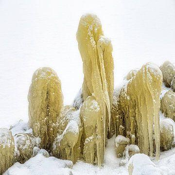 Oever ijs sculptuur