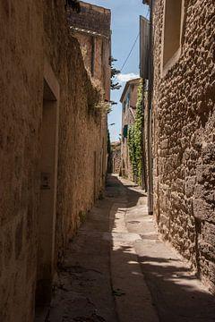 Rustiek straatje in Frankrijk van Dick Carlier