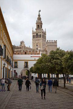Catedral de Sevilla, aus Santa Cruz von Kees van Dun