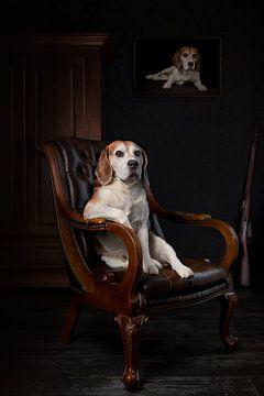 Beagle Dog Hond van Patrick Reymer