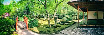 Quelle im Japanischen Park, Den Haag von Ariadna de Raadt
