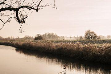 Gelderland Überschwemmungsgebiete von Bert-Jan de Wagenaar