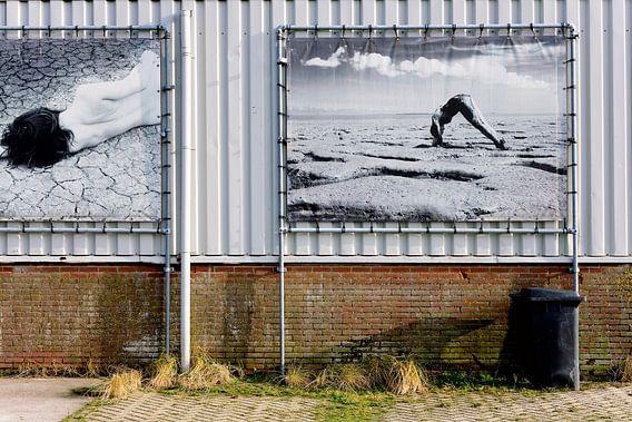 Urban art, naked II