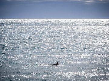Liggen op de oceaan nabij Hahei Nieuw-Zeeland van Rik Pijnenburg