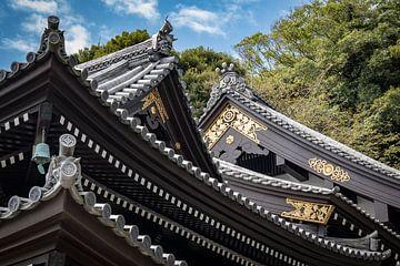 Detailaufnahme des japanischen Daches von Marcel Alsemgeest