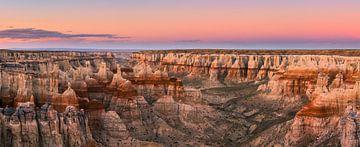 Panorama van Coal Mine Canyon, Arizona, Verenigde Staten van Henk Meijer Photography