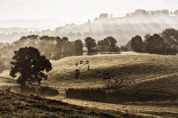 Sonnenaufgang Gulpen von Rob Boon