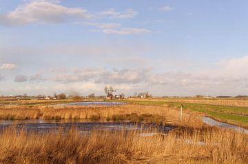 de polder von Robert Lotman