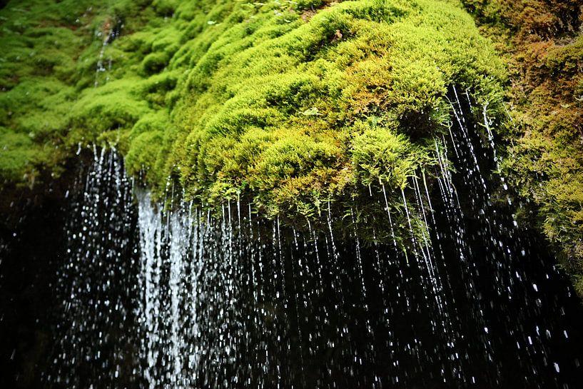 Drops van Jasper van de Gein Photography