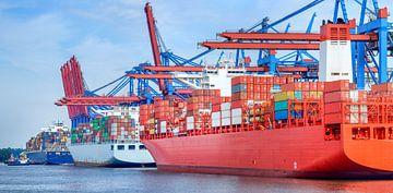 Container schepen in de haven van Hamburg van Sjoerd van der Wal