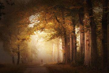 Whispering leaves . Loofbos. van Saskia Dingemans