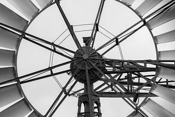 Kikkoman (Moulin à vent américain) sur Andrea de Vries