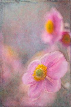 Romantik im Garten von Francis Dost