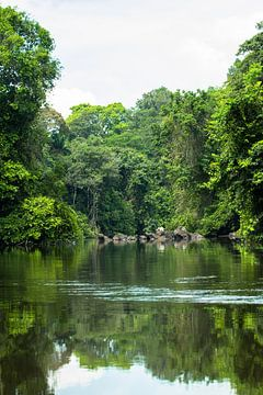 Kreek met soela in Suriname van rene marcel originals