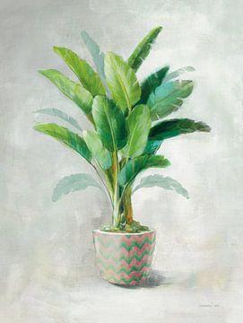 Greenhouse Palm II Chevron Pot, Danhui Nai van Wild Apple