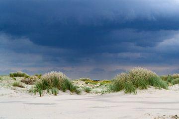 duinen bij storm van Eva Overbeeke