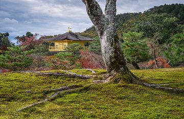 Kinkaku-ji, Gouden tempel Kioto van Roel Beurskens