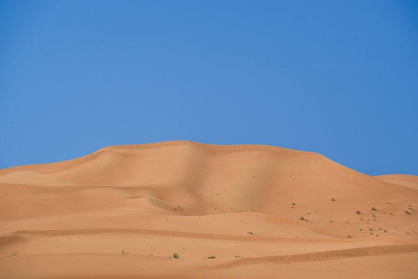 Zandduin in Al Ain van Pieter van Roijen