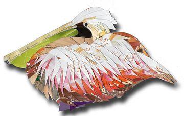 Rustende pelikaan van Ruud van Koningsbrugge