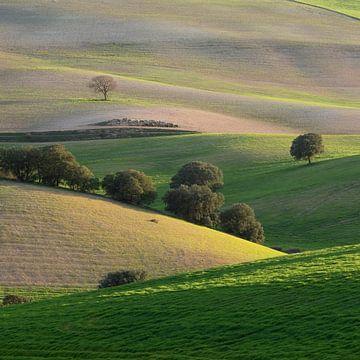 Schichten in der andalusischen Landschaft von Leontine van der Stouw