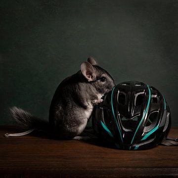 Niedliches Chinchilla in einer Stilllebenszene mit Fahrradzubehör von Leoniek van der Vliet