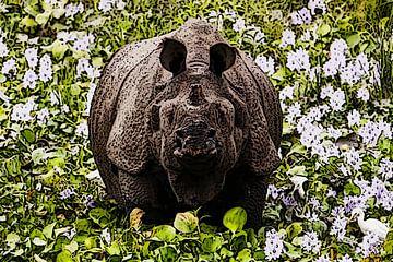 Neushoorn India tussen bloemen en reiger van e pha