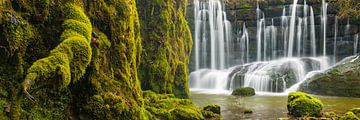 Moos am Wasserfall von Denis Feiner