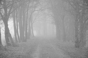 Ein nebliger Morgen im Oktober von Theo van Woerden