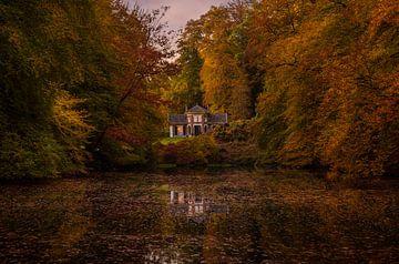 leben zwischen Herbst von Mario Visser