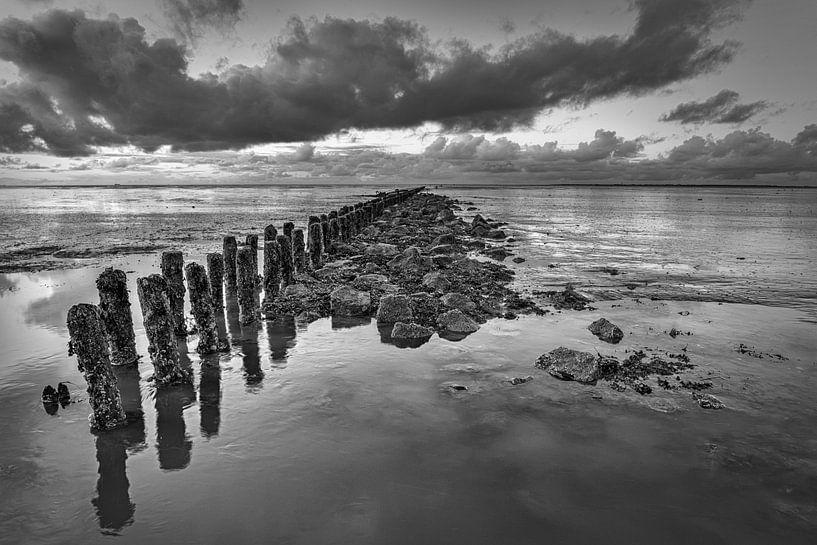 Waddenzee Nederland van Peter Bolman