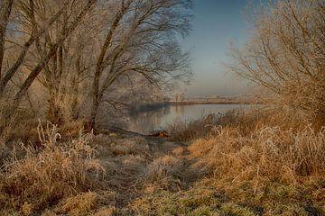 winterlandschap von Nicole Wiggerman