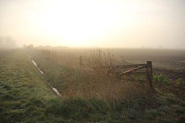 Texel Landschap 024 van Starworks Lien van der Star