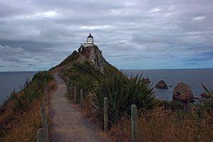 Nugget Point Lighthouse, Nieuw Zeeland
