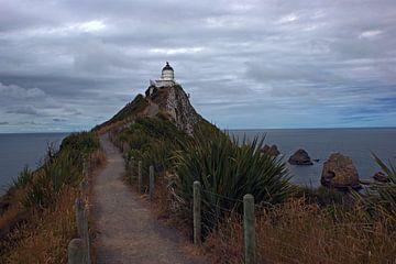 Nugget Point Lighthouse, Nieuw Zeeland van Jeroen van Deel