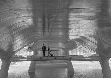 Promenadebrug de Lentloper van Henk Speksnijder
