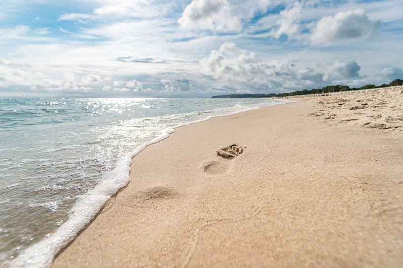 Ostsee Strand Insel Rügen von Mirko Boy