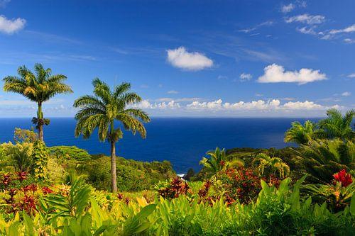 Garden of Eden - Maui - Hawaii van Henk Meijer Photography