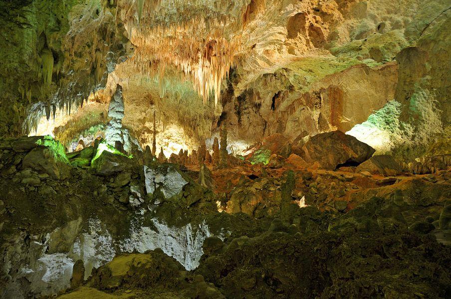 Carlsbad Caverns van Paul van Baardwijk